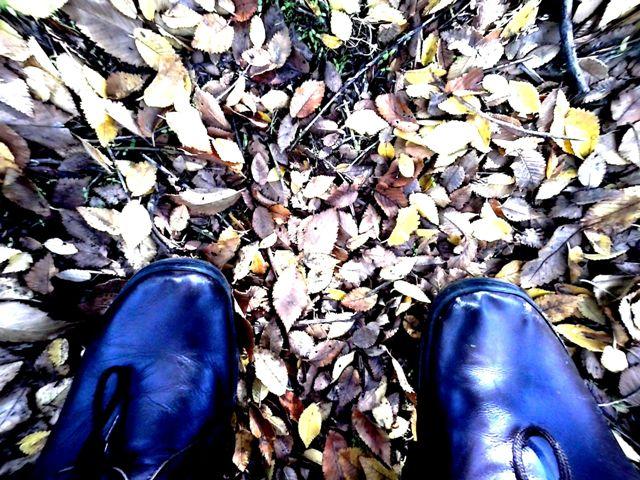 piedi a terra