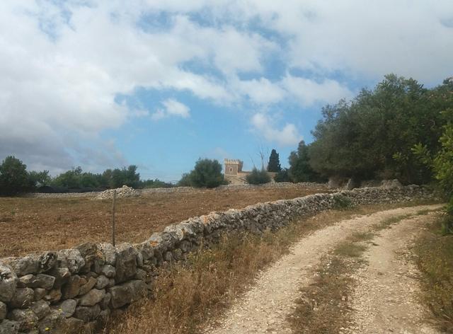agriculture sicile