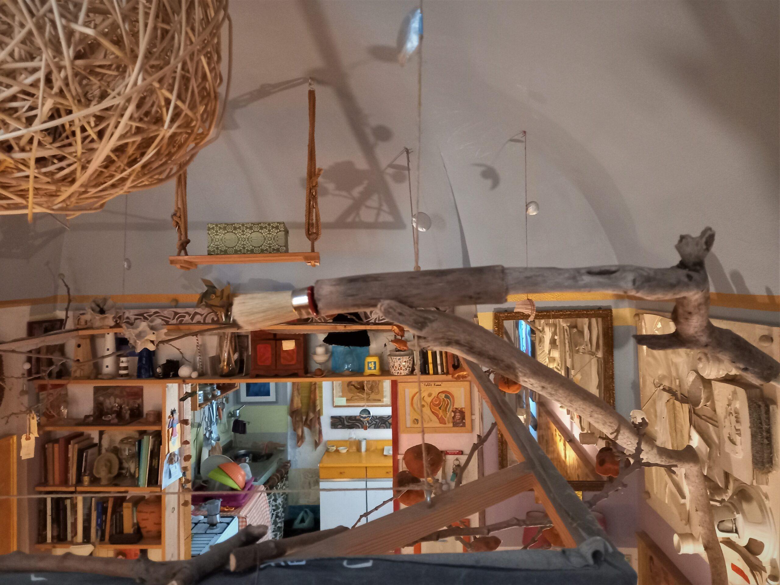 architettura bislacca iperbolica
