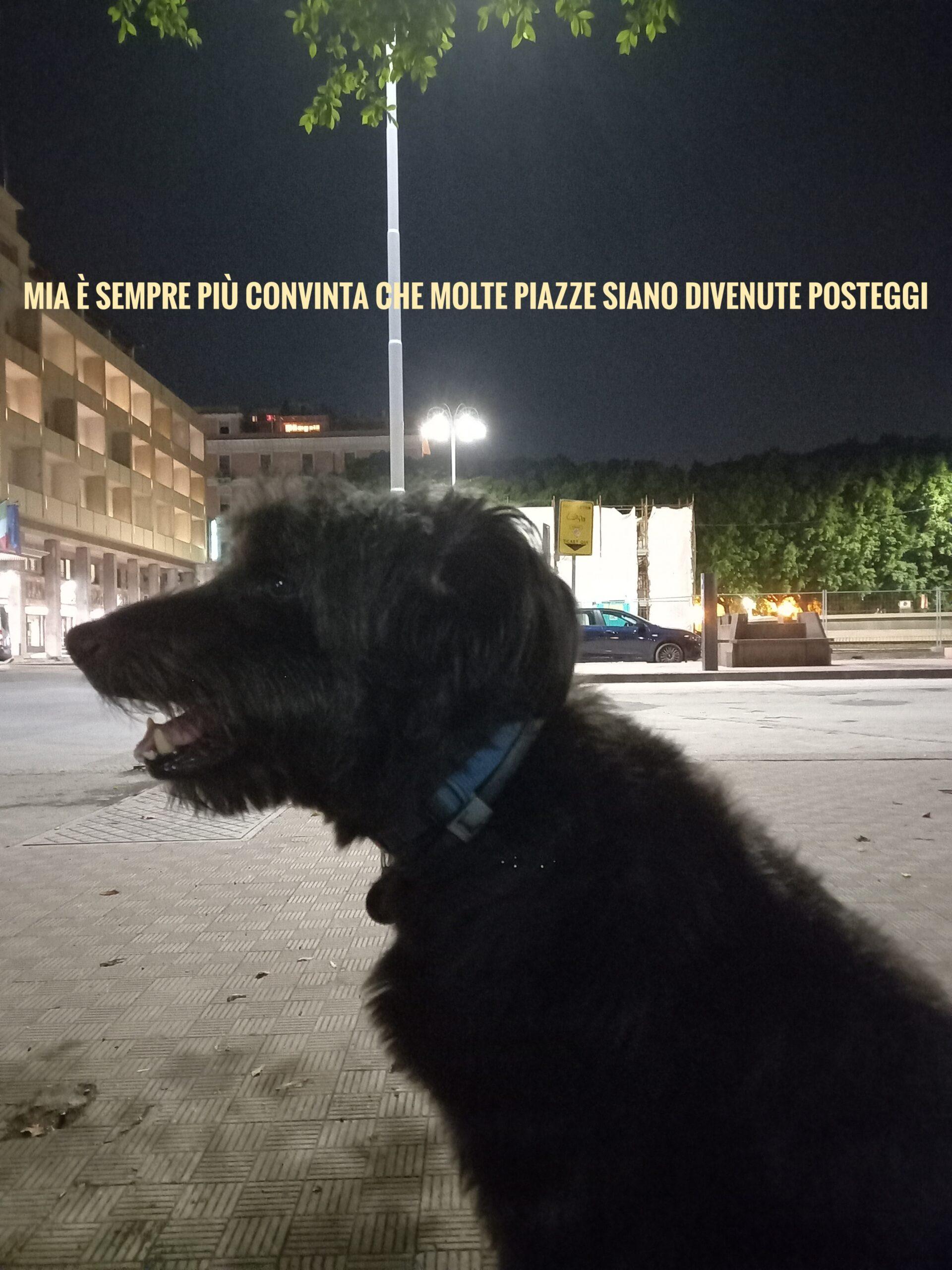 Catania, Piazza Giovanni Verga @ Fili d'Oro Rispetto Pianeta, Riappropriazione Spazio Respira - Metropoli del Melograno